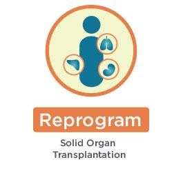 Reprogram - Solid Organ Transplant